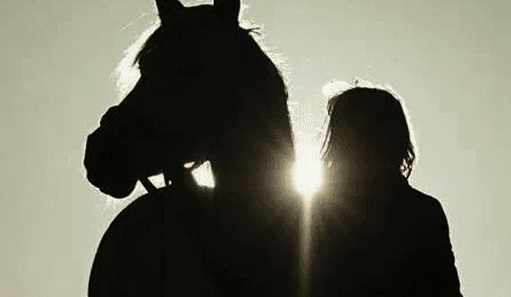 Ladies Long Sleeve Tee Club Horse