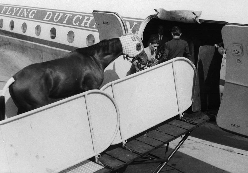 The Great Ribot leaves by plane for a race