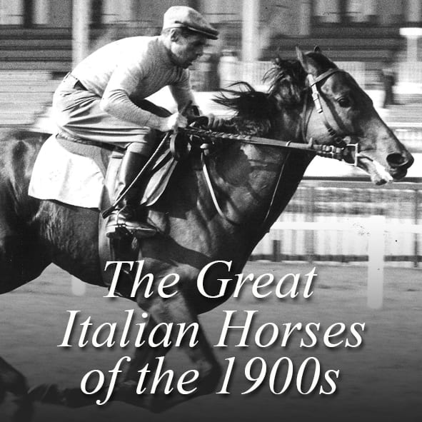 The Great Italian Horses of 1900s