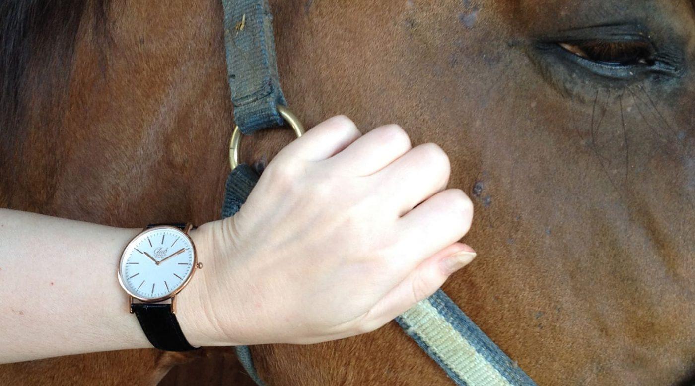 Thoroughbred watch