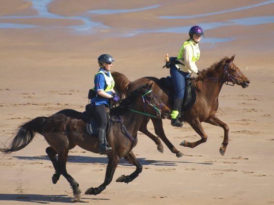 Endurance riding 1