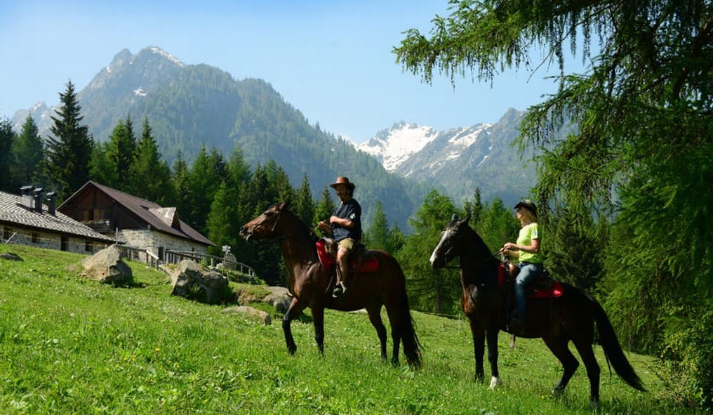 Horseback riding in Cortina