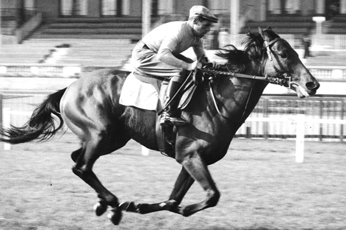 Gallop History