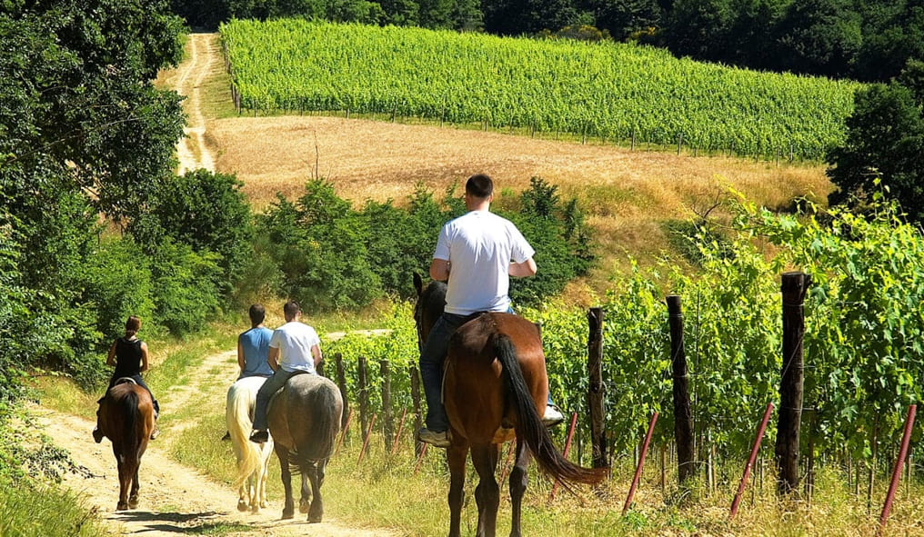 Horse riding in Tuscany Firenze