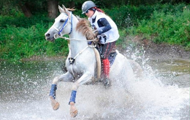 Horse Riding Endurance