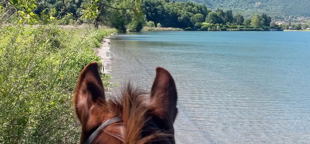 Horseback Riding on Como Lake