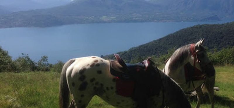 Horseback Riding on Lake Maggiore