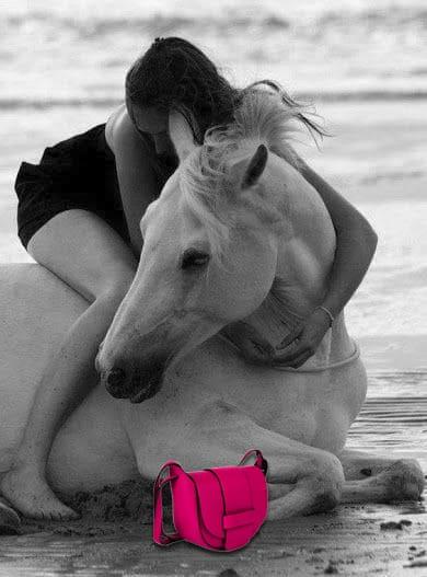 Horseback riding in the Cinque terre Bag