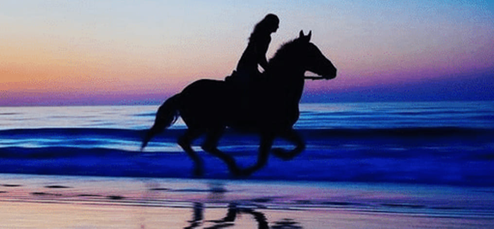 How to be perfect on horseback