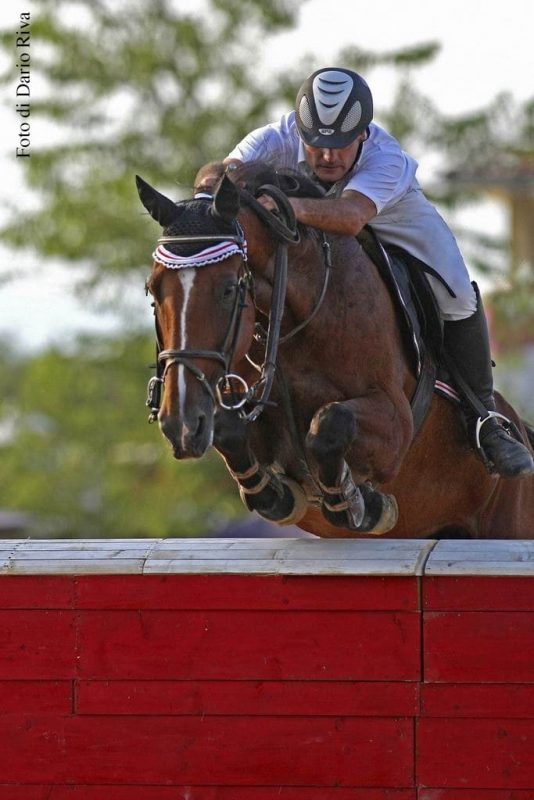 How to be perfect on horseback Potenza
