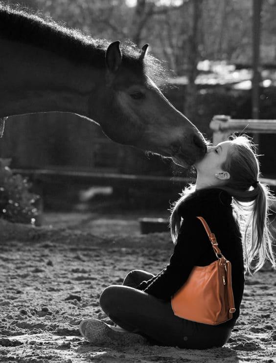 Club Cavallo Italia Unisex Short Sleeve V-Neck T-Shirt and horse