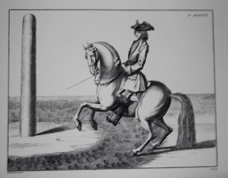 Dressage Schools of Cavalry
