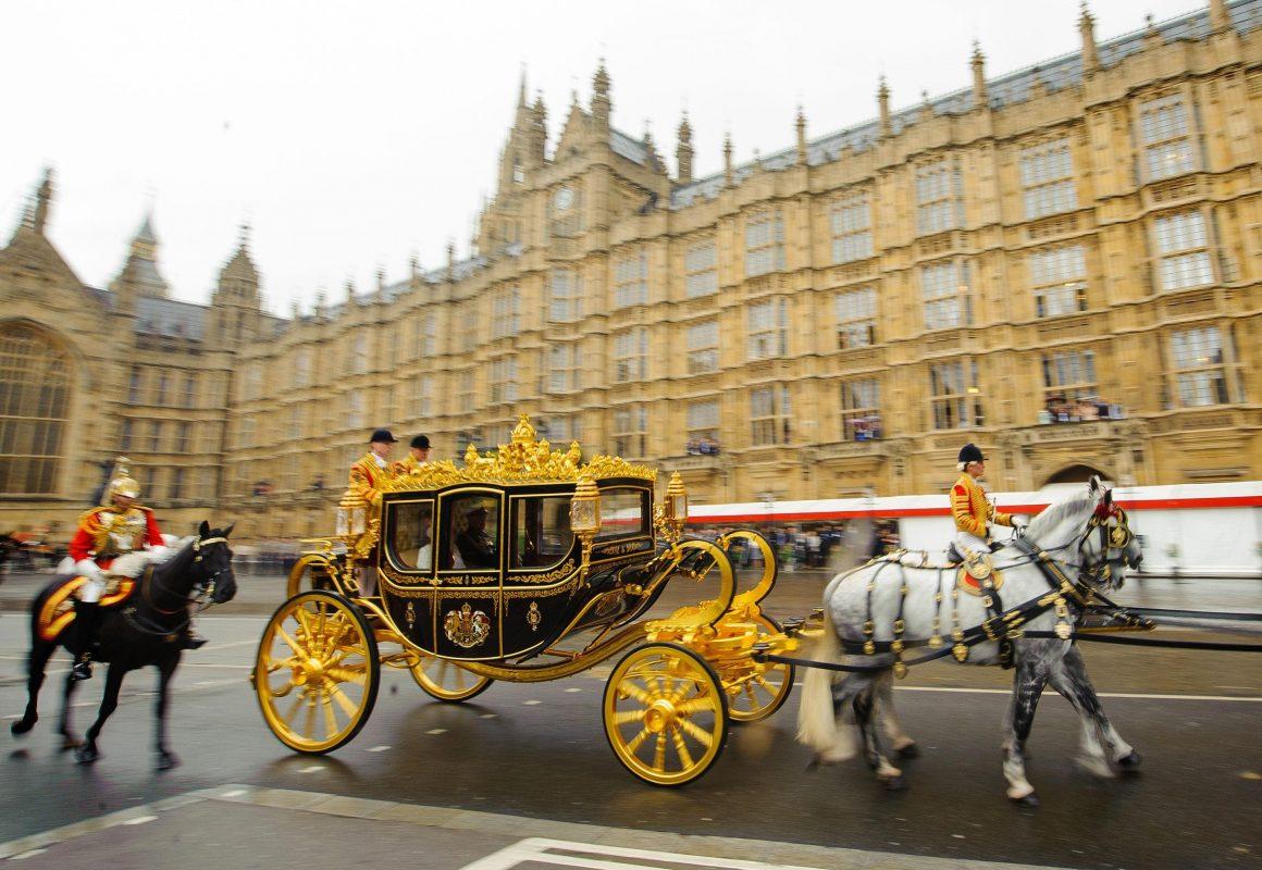 Shire Horse Queen Elizabeth