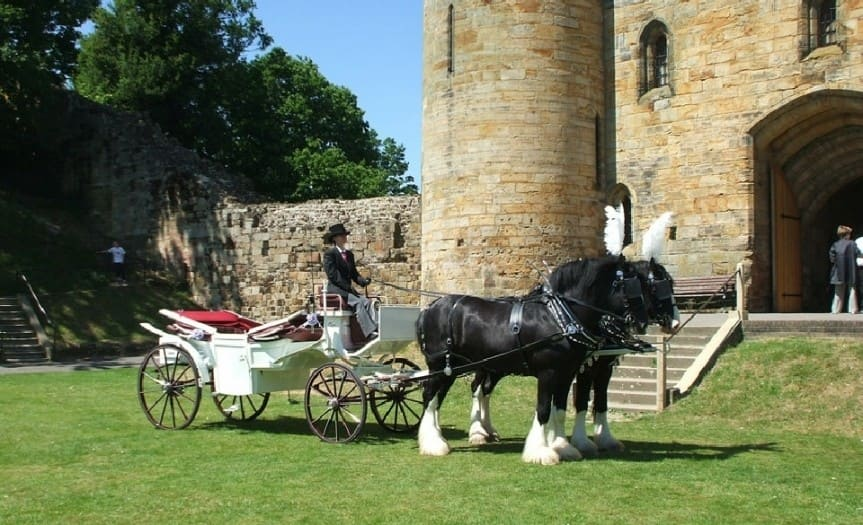 Sire Horse Carriage