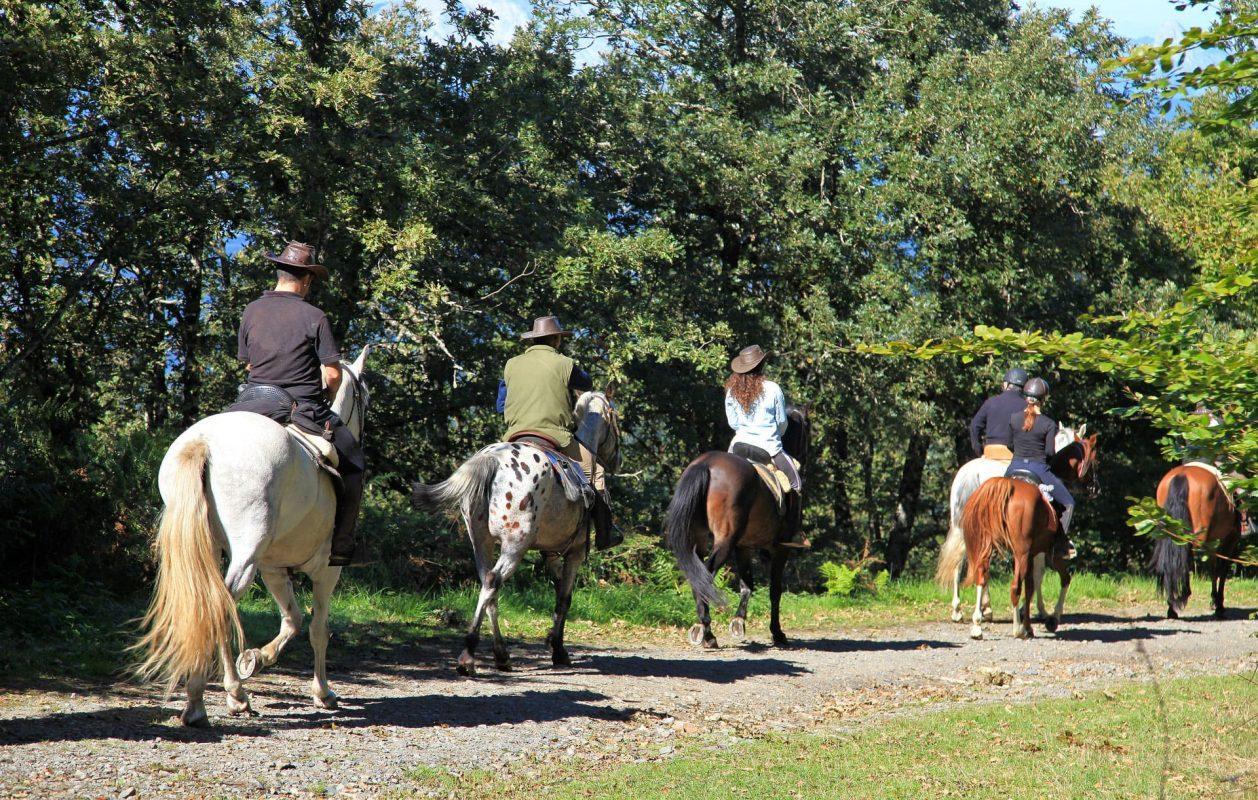 Horseback Riding in Gubbio