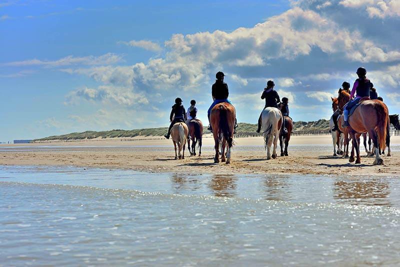 Horseback Riding in Punta Ala