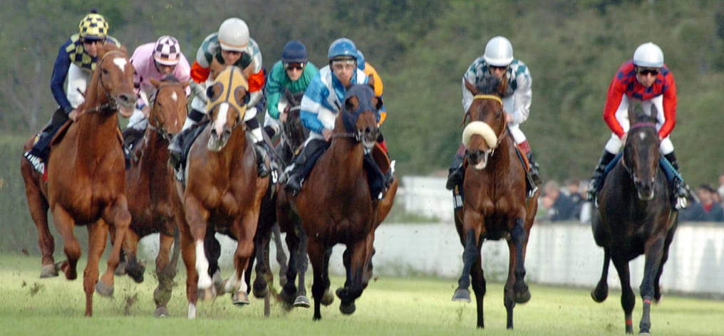 Italian Gallop Championship